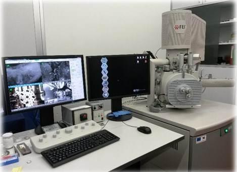 Scanning Electron Microscope (FEI Quanta 450)